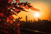 Sunrise on Guomao as seen from the Jingshan Park. Beijing 16.02.12